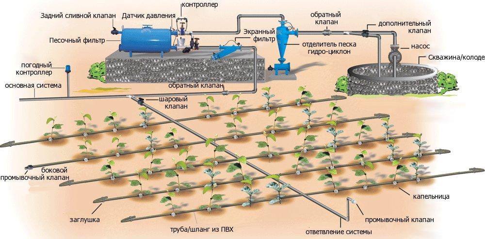 sistema-avtomaticheskogo-kapelnogo-poliva-teplicy