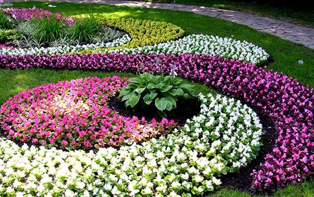 Дизайн цветников и посадка цветов